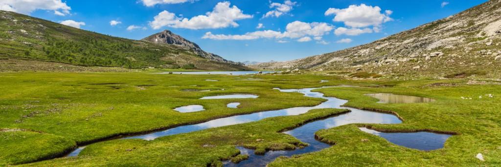 14162-france-Corselkjlh-Pozzines-pres-du-lac-de-Nino--panorama-sentucq